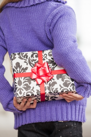 Midsection of girl hiding Christmas gift behind back at home Stock Photo - 23746681