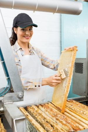 beekeeper: Portrait of beautiful female beekeeper brushing honeycomb in factory Stock Photo