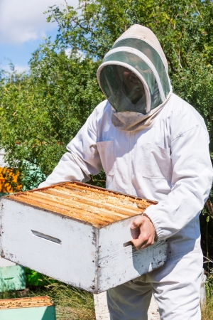 apiculteur 42