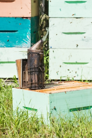 apiary: Closeup of bee smoker on crate at apiary