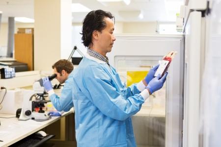 staff medico: Il personale medico nel laboratorio borsa ispezione dei globuli rossi Archivio Fotografico