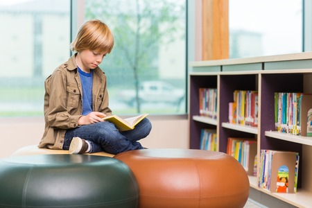 reference book: Young boy reading book in school library