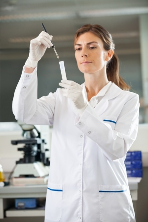 lab technician: Female scientist analyzing test tube in medical lab