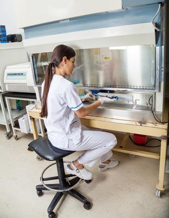 研究室での実験技術者