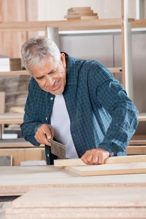 handsaw: Senior Carpenter Cutting Wood With Saw In Workshop