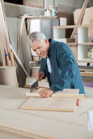 serrucho: Carpintero feliz de cortar madera con sierra pequeña Foto de archivo