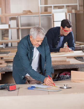 woodworker: Male Carpenter Working On Blueprint At Workshop