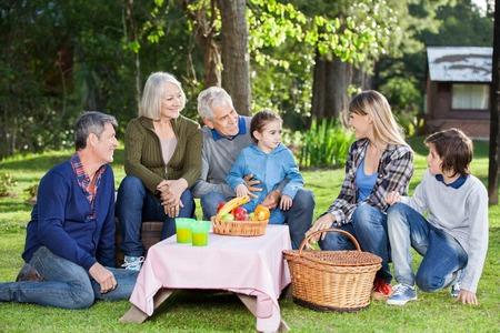 campsite: Family Enjoying Picnic At Campsite