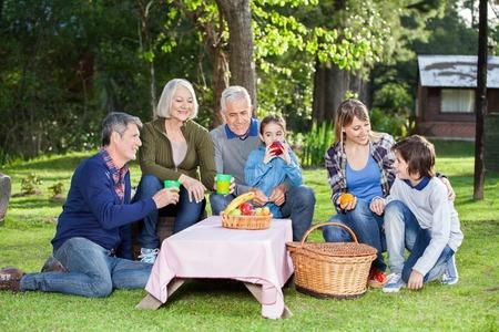 family picnic: Familia que goza de sana comida campestre en el parque