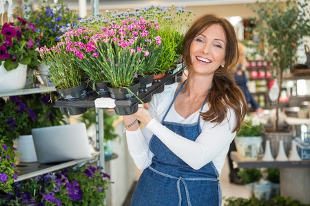 botanist: Portrait of smiling botanist carrying crate full of flower plants in store Stock Photo