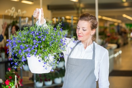 mid adult female: Beautiful mid adult female florist smelling purple flowers in shop