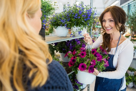 salesgirl: Smiling mid adult salesgirl showing fresh flower plant to female customer in shop