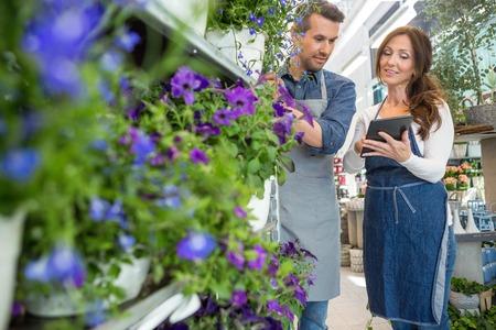 petites fleurs: Homme fleuriste regardant collègue en utilisant un ordinateur tablette boutique de fleurs