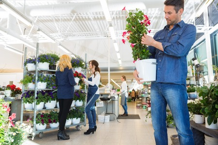 plant in pot: Man examining flower plant with salesgirl assisting customer in background at shop