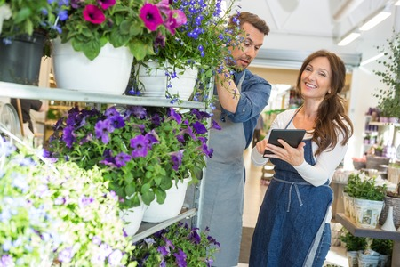 Male and female workers using digital tablet in flower shop Standard-Bild