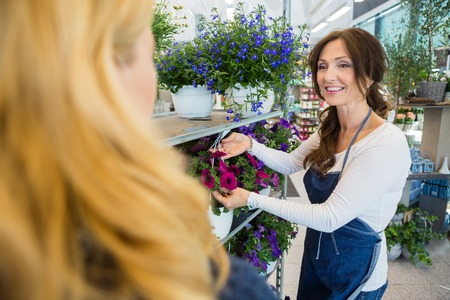 salesgirl: Smiling florist showing fresh flower plant to female customer in shop Stock Photo