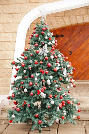 christmas house: Beautifully decorated Christmas tree in front of house