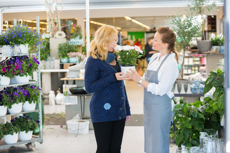 salesgirl: Smiling salesgirl looking at female customer smelling flowers in shop