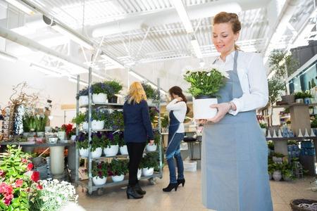 La metà degli adulti commessa holding vaso di fiori con il cliente e il collega in background presso il negozio photo