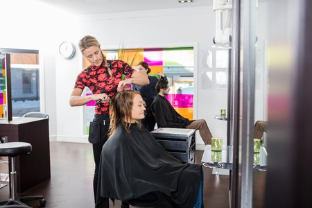 beauty parlor: Mature woman getting haircut by female hairstylist at beauty parlor
