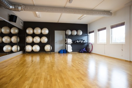 fitness center: Pilate balls arranged in shelves at gym