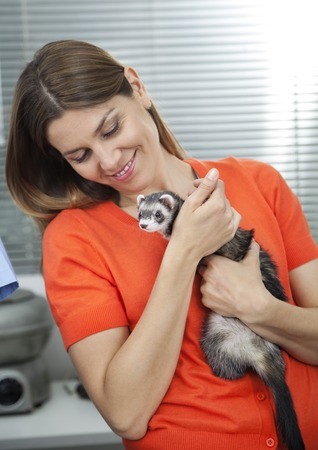 weasel: Happy mid adult woman looking at weasel in veterinary Stock Photo