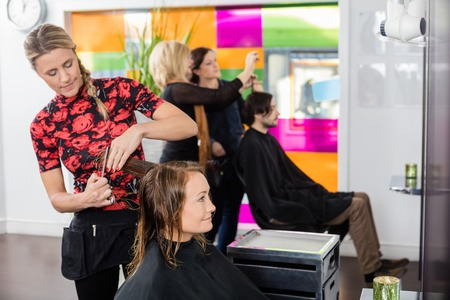 female beauty: Hairdresser cutting female clients hair in beauty salon
