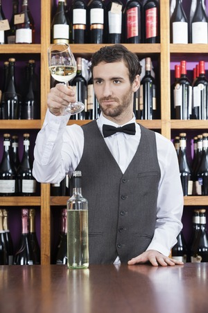 shop keeper: Young bartender examining white wine in glass at shop