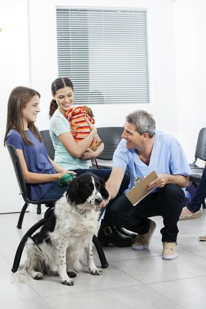 crouching: Smiling mature nurse crouching by pets and owners in waiting area of clinic