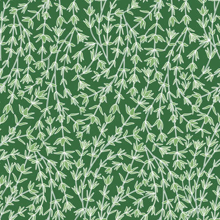 Seamless Pattern with Thyme Stems and Leaves