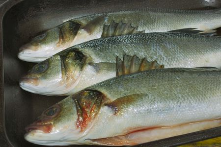 whitefish: three sea bass in a baking tray Stock Photo