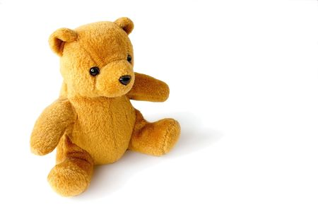 golden teddy with copyspace to the right