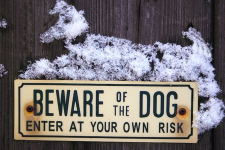 beware of the dog sign with a dog of snow lying on top of it photo
