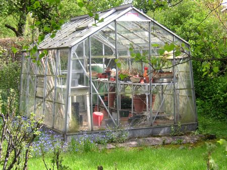 greenhouse at the bottom of the garden