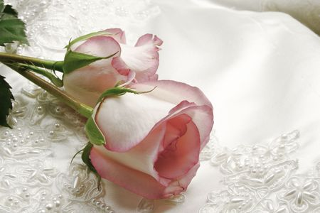 pink roses and white wedding gown Stock Photo - 932573
