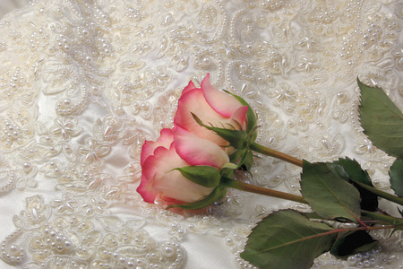 pink rose:  roses on beaded  embroideredsatin bridal gown Stock Photo