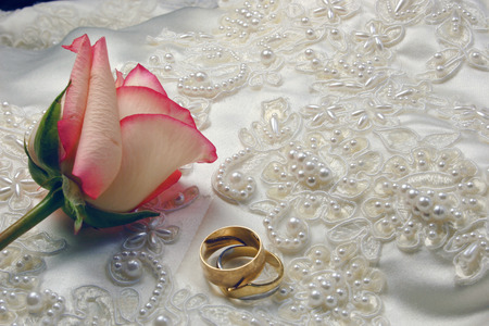 bridal gown: los anillos de bodas y se levantaron en el vestido nupcial bordado del sat�n Foto de archivo