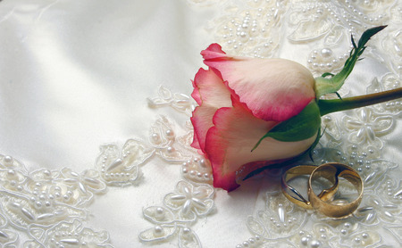 wedding rings and a rose on embroided satin bridal gown photo