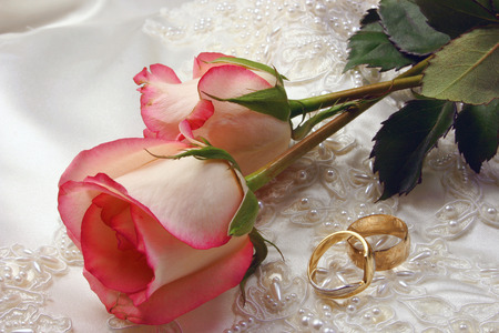 wedding rings and a rose on embroidered satin bridal gown Stock Photo - 1424321