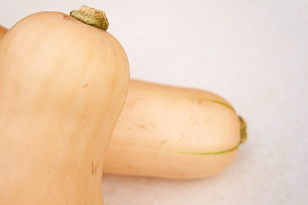 squash vegetable: two butternut squash vegetable on a light background