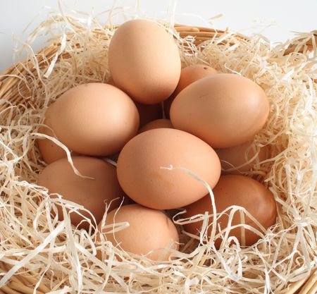 clutch of eggs in a basket filled with shavings