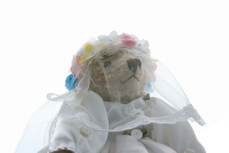 teddy dressed as a bride Stock Photo - 1904705