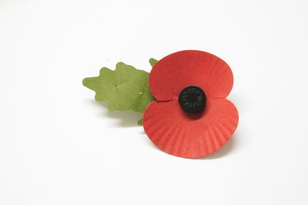 rememberance poppy over a light background Stock Photo