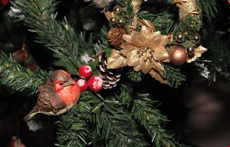 christmas decoration on the branch of a christmas tree Stock Photo - 2346768
