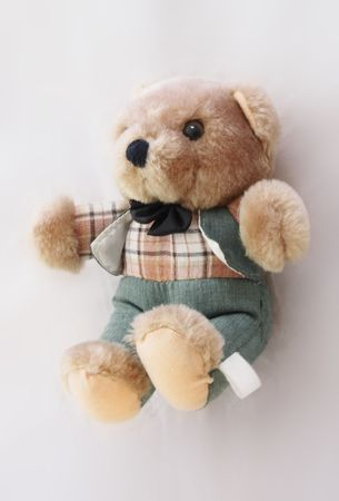 checked shirt: teddy bear in a green suit and checked shirt
