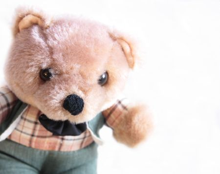 teddy bear in a green suit and checked shirt Stock Photo - 3421918