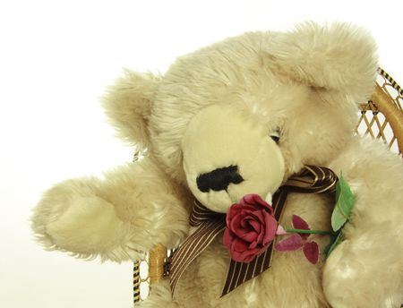 teddy bear with a red rose perhaps a gift for a loved one Stock Photo - 4287157