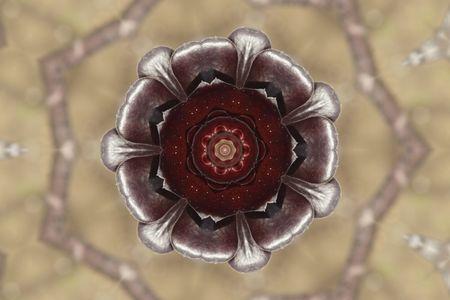 kaleidascope: a kaleidoscope  background flower effect abstract illustration