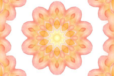 kaleidascope: flower kaleidoscope  background tile effect abstract illustration