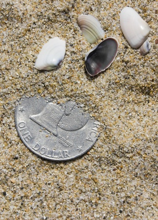 Silver dollar, partly covered by sand, rests near some small seashells photo